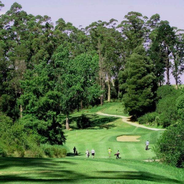 george-golf-club-2