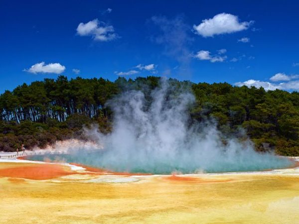 geothermal-rotorua-0