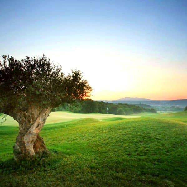 kontinental-europa-golf